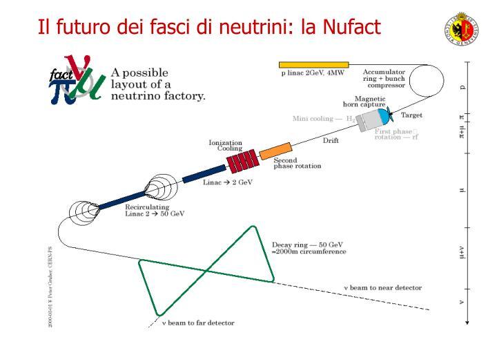 Il futuro dei fasci di neutrini: la Nufact