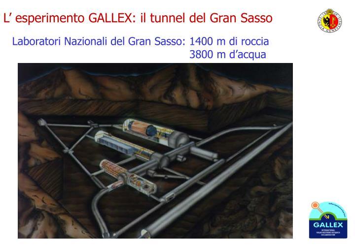 L' esperimento GALLEX: il tunnel del Gran Sasso