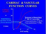 cardiac vascular function curves1