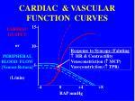 cardiac vascular function curves2