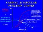 cardiac vascular function curves3