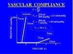 vascular compliance