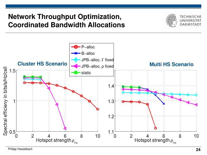 Network Throughput Optimization, Coordinated Bandwidth Allocations