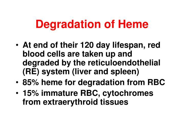 Degradation of Heme
