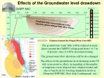 effects of the groundwater level drawdown