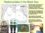 radionuclides in the black sea