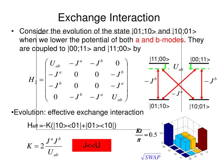 Exchange Interaction