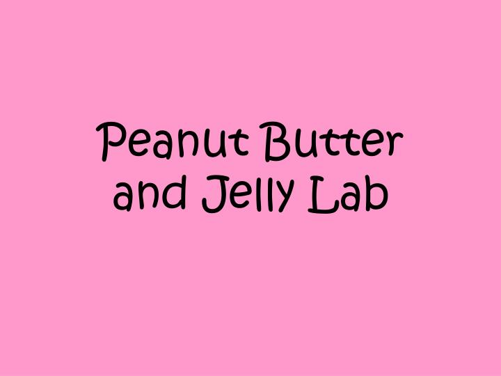 peanut butter and jelly lab n.
