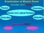 examination of muscle power1