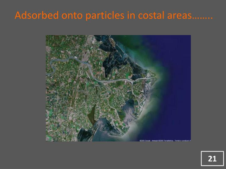 Adsorbed onto particles in costal areas……..