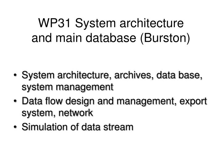 WP31 System architecture