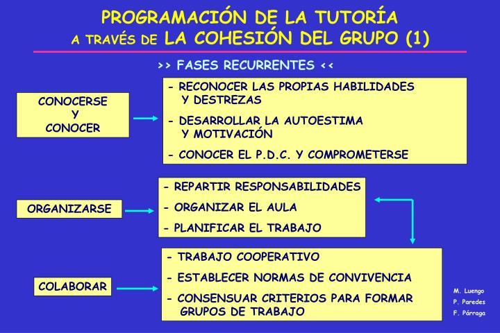 PROGRAMACIÓN DE LA TUTORÍA