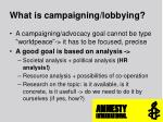 what is campaigning lobbying1