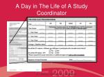 a day in the life of a study coordinator12