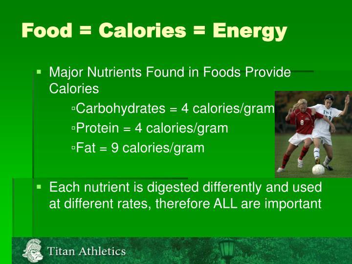 Food calories energy