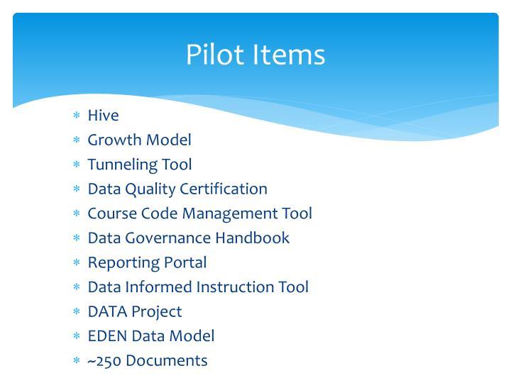 Pilot Items