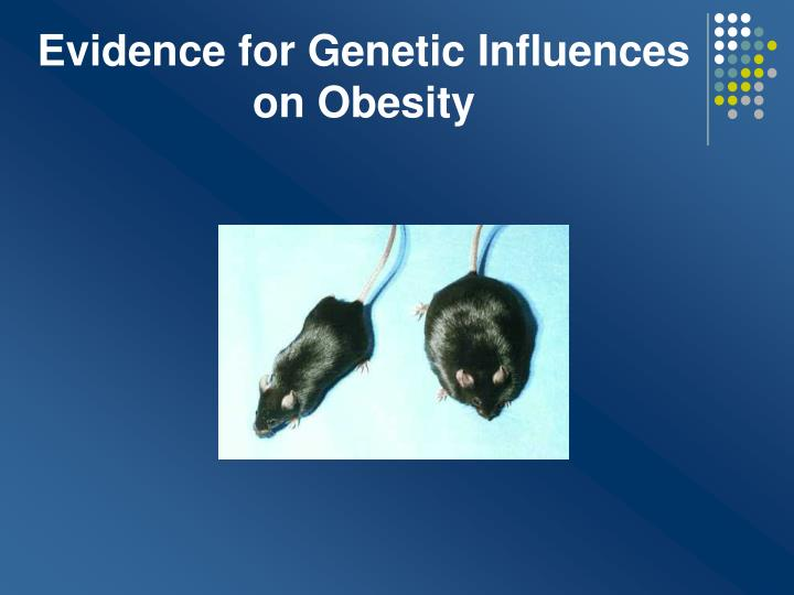 Evidence for Genetic Influences on Obesity