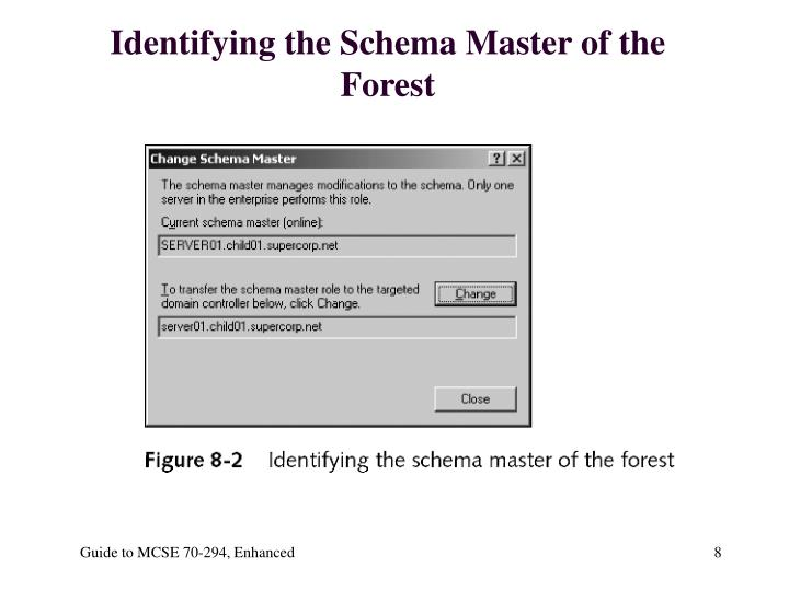 Identifying the Schema Master of the Forest