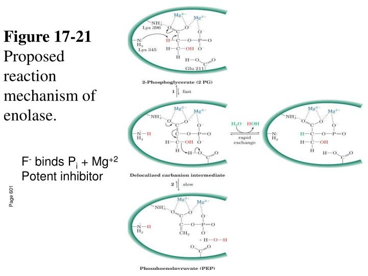 Figure 17-21
