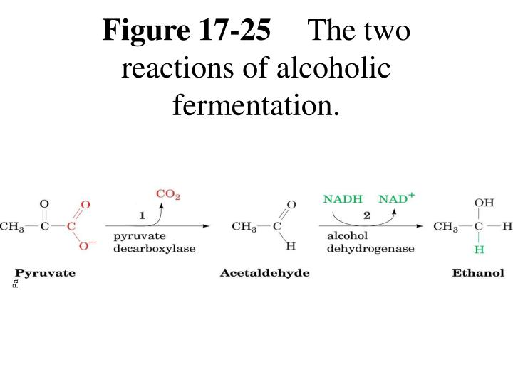 Figure 17-25