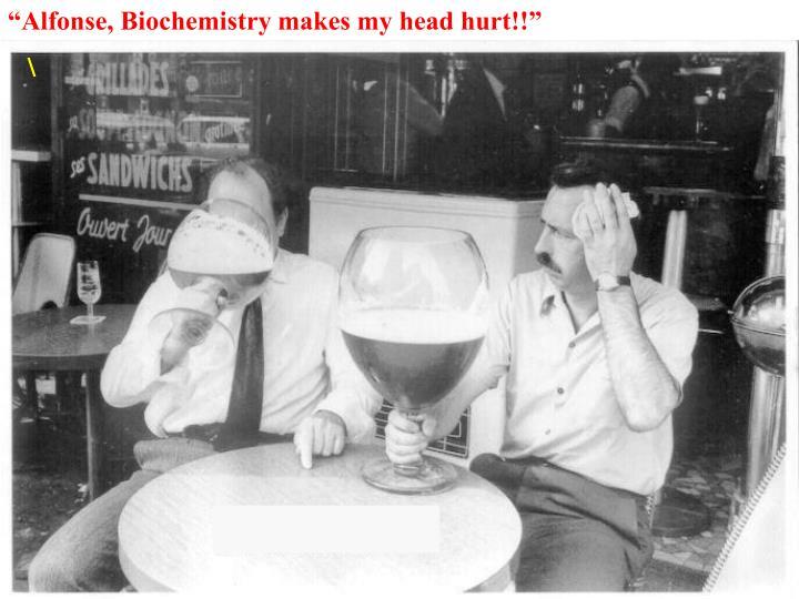 """""""Alfonse, Biochemistry makes my head hurt!!"""""""