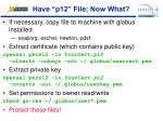 have p12 file now what