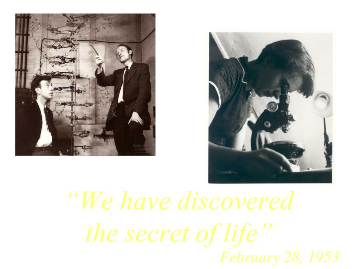 """""""We have discovered the secret of life"""""""