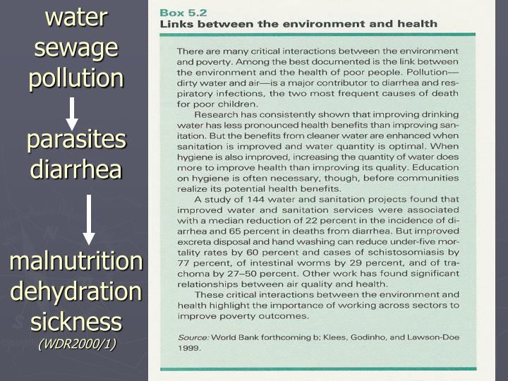 water sewage pollution