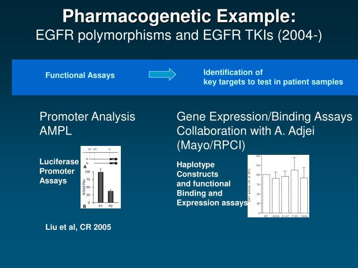 Pharmacogenetic Example: