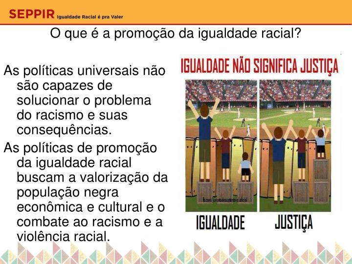 O que a promo o da igualdade racial
