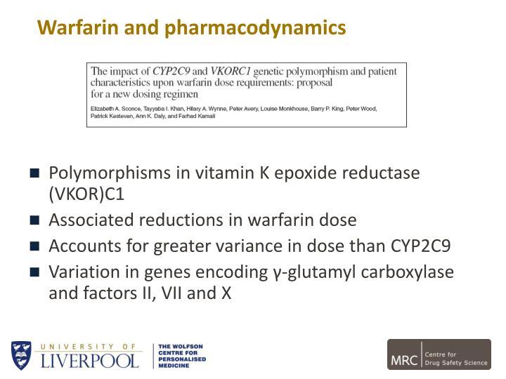Polymorphisms in vitamin K
