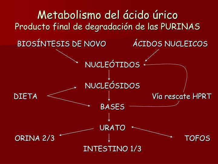 Metabolismo del ácido úrico