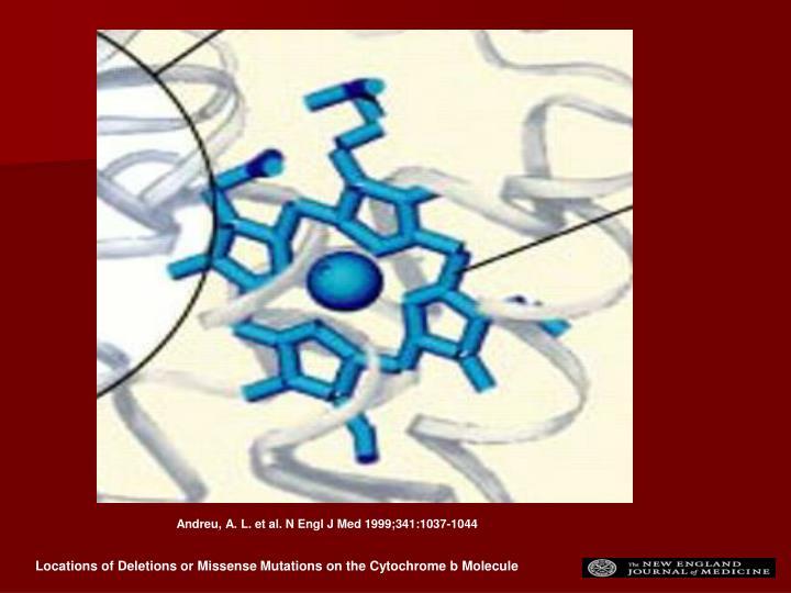 Andreu, A. L. et al. N Engl J Med 1999;341:1037-1044
