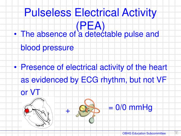 The absence of a detectable pulse and blood pressure