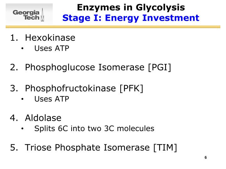 Enzymes in Glycolysis