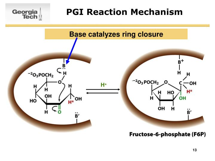 PGI Reaction Mechanism