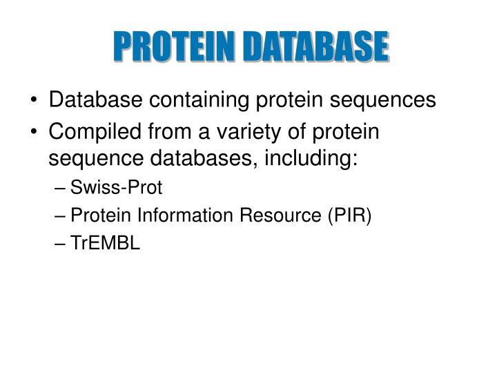 protein database n.