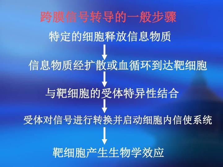 跨膜信号转导的一般步骤