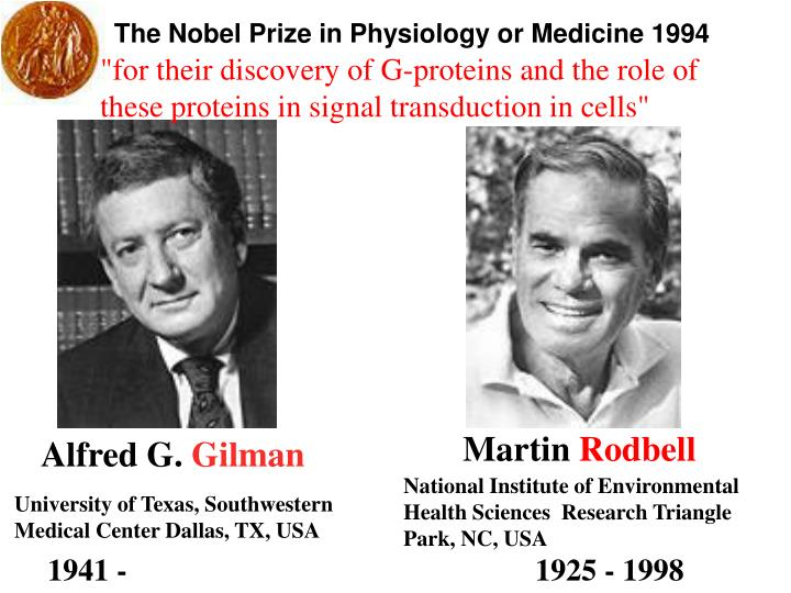 The Nobel Prize in Physiology or Medicine 1994