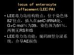 iocus of enterocyte effacement lee pai