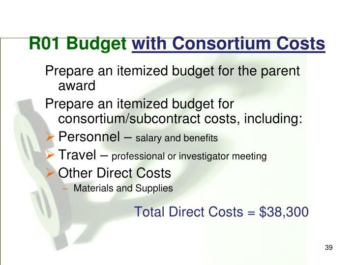 R01 Budget