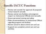 specific iacuc functions