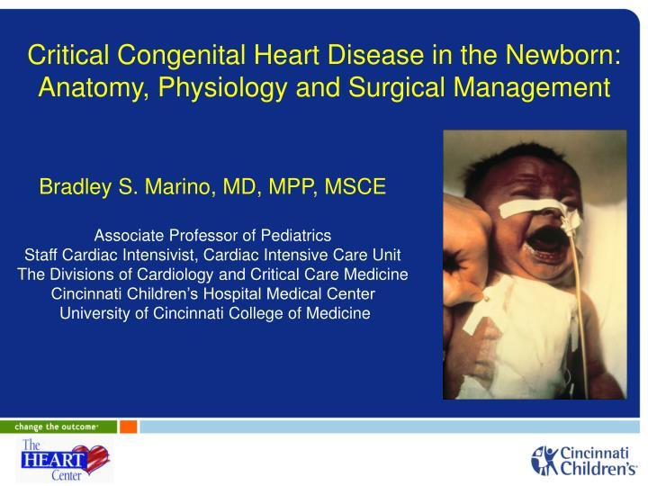 PPT - Critical Congenital Heart Disease in the Newborn