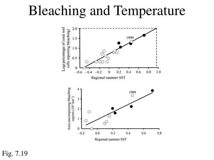 Bleaching and Temperature