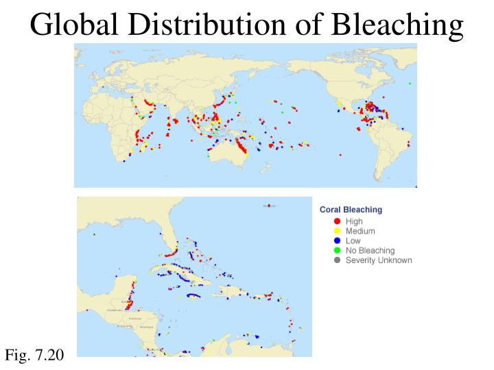 Global Distribution of Bleaching