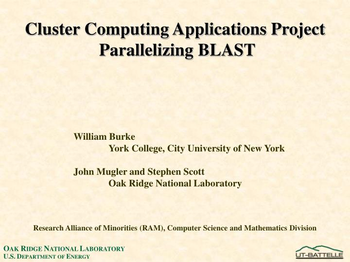 Cluster Computing Applications Project
