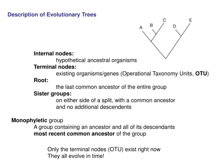 Description of Evolutionary Trees