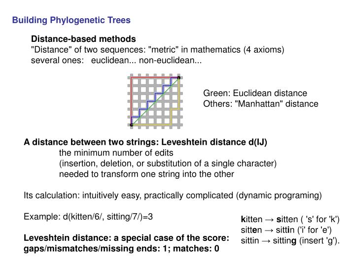 Building Phylogenetic Trees