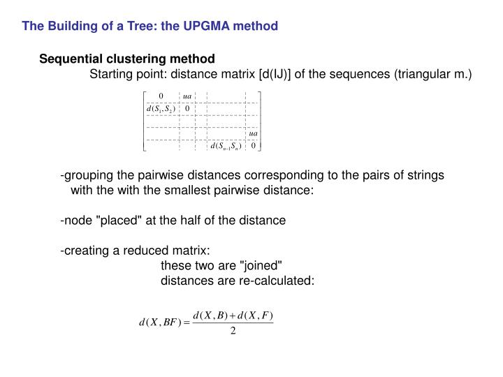 The Building of a Tree: the UPGMA method