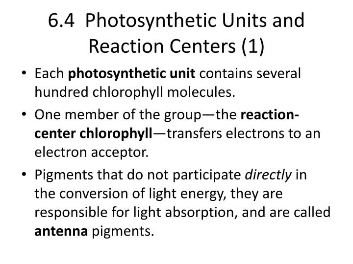 6.4  Photosynthetic Units and Reaction Centers (1)